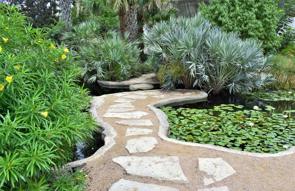 Stone pathway in the center of a pond in the San Antonio Botanical Garden