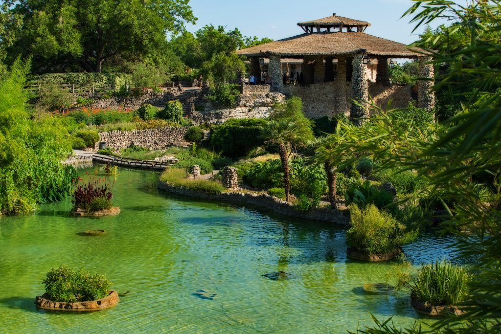 Japanese tea garden in San Antonio with a pond in the foreground of the photo and a stone pavilion in the background