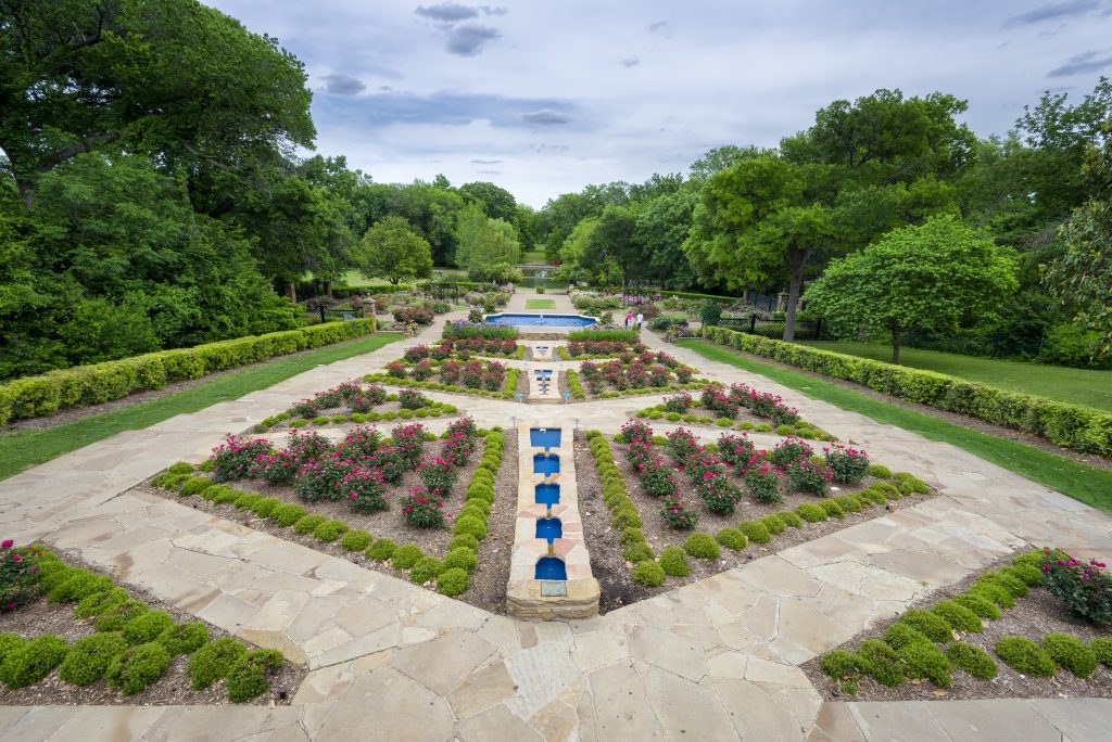 Rose Garden in the Forth Worth Botanic Garden, one of the most instagrammable places in Forth Worth TX