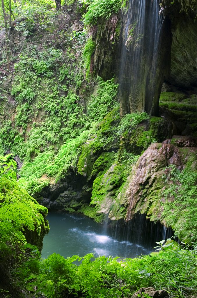 Westcave Waterfall among leafy green foliage in central Texas
