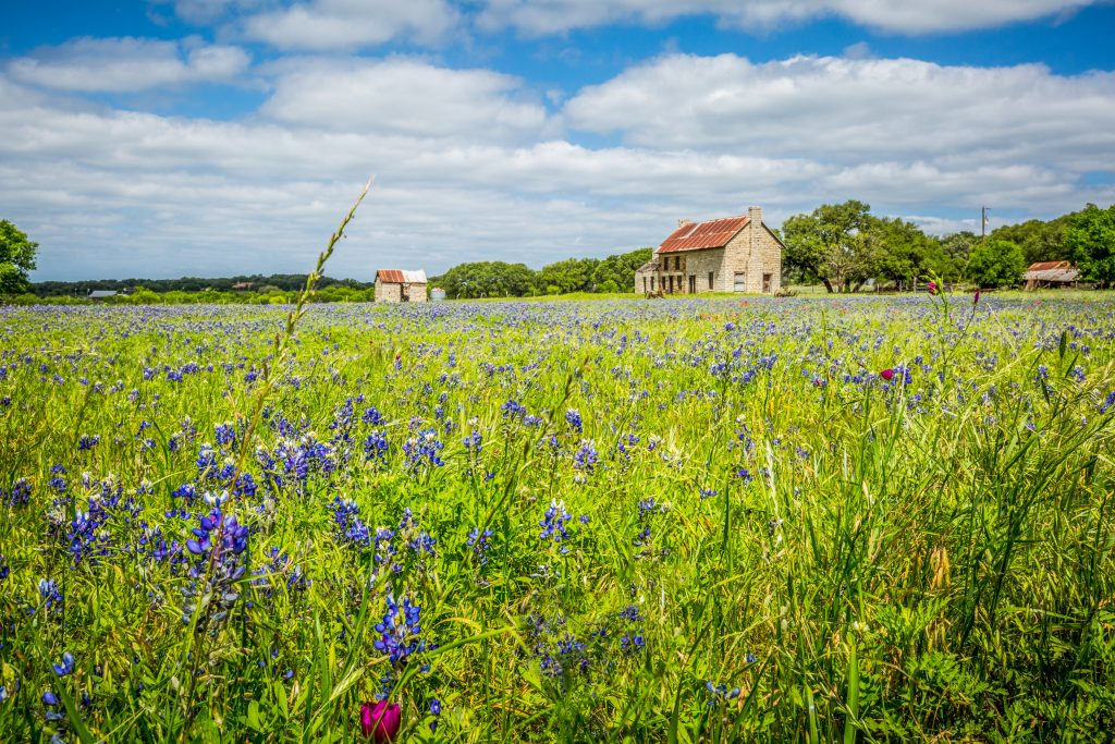 Marble Falls Texas with one building in a field with bluebonnets on it