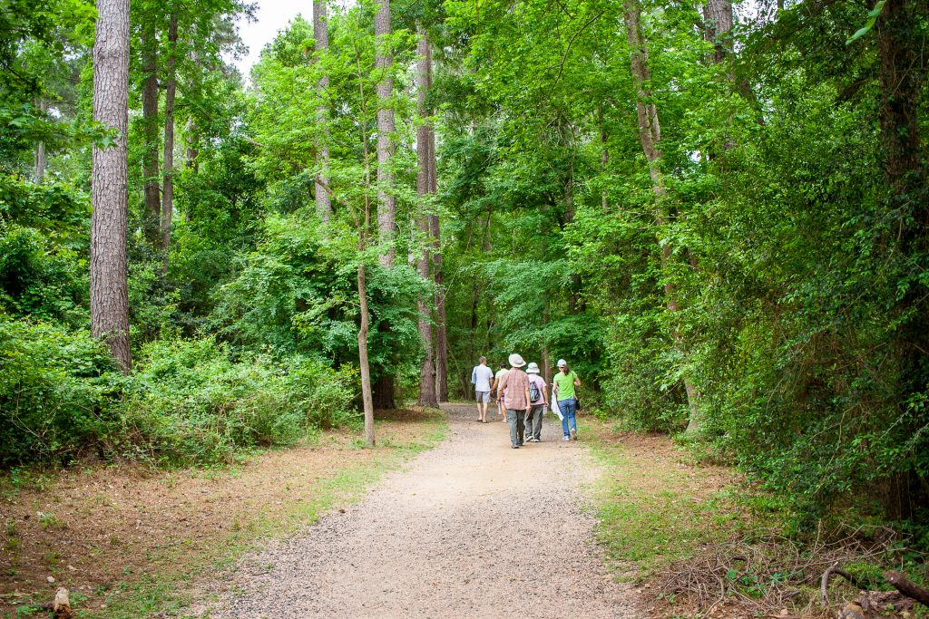 Forested path with people hiking near houston texas