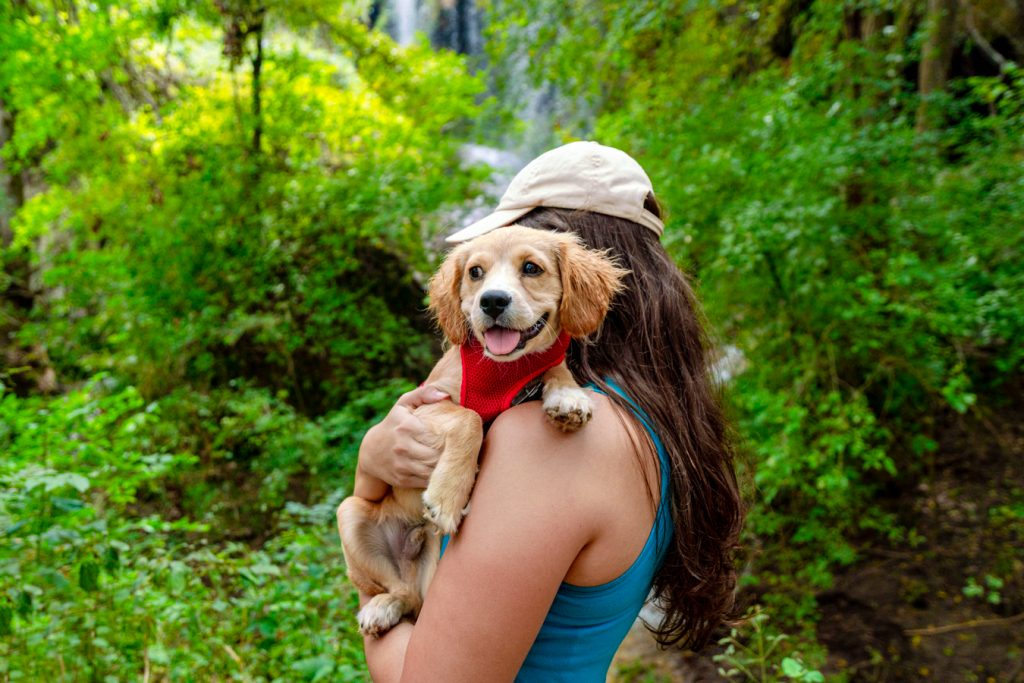 Kate Storm holding puppy Ranger in front of Gorman Falls Texas