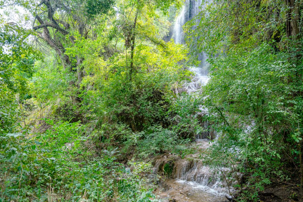 Gorman Falls Texas in Colorado Bend State Park surrounded by green trees
