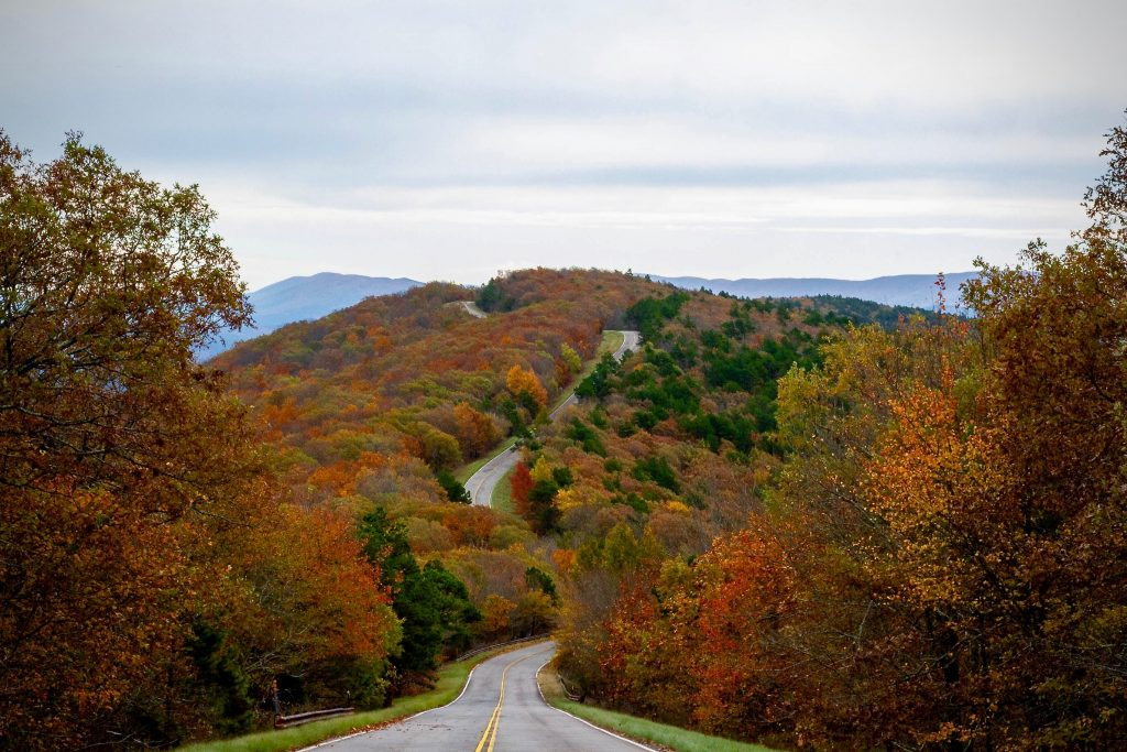talimena scenic byway in the fall, with a road in the center of the photo