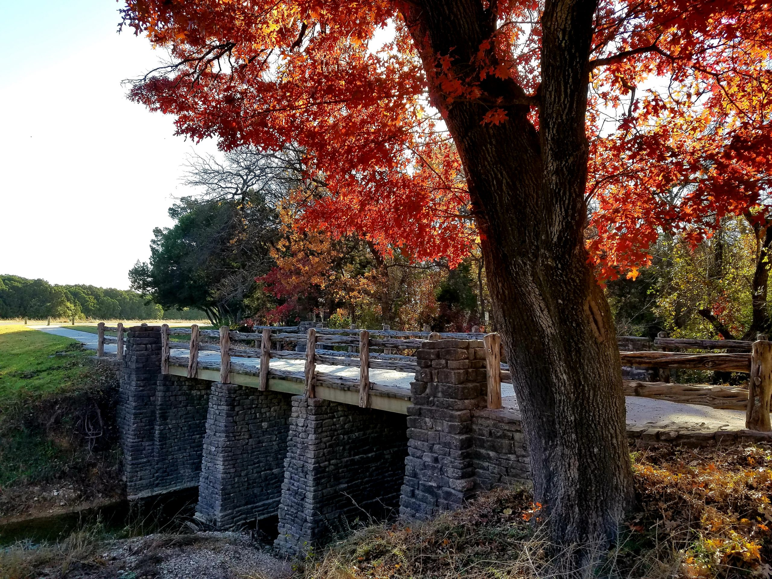 Bridge in Cleburne State Park with a tree boasting fall foliage in the foreground. This state park is home to some of the best hikes near Dallas TX