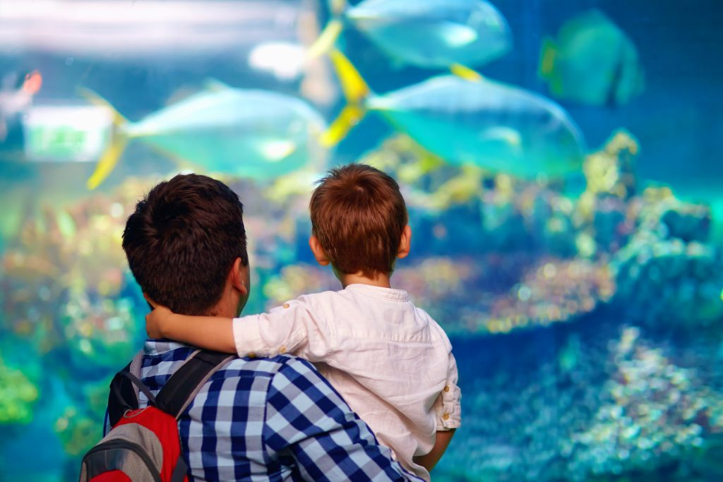 Father holding his young son in front of a oceanarium. The Texas State Aquarium belongs on any list of what to do in Corpus Christi TX
