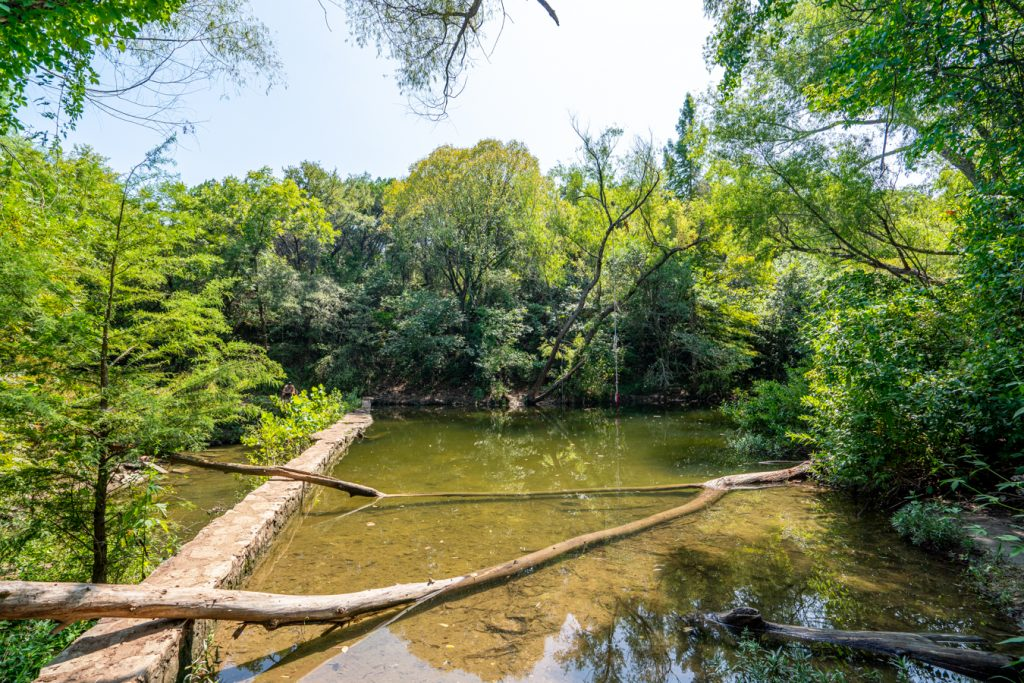creek at st edwards park in austin with a rope swing visible in the background