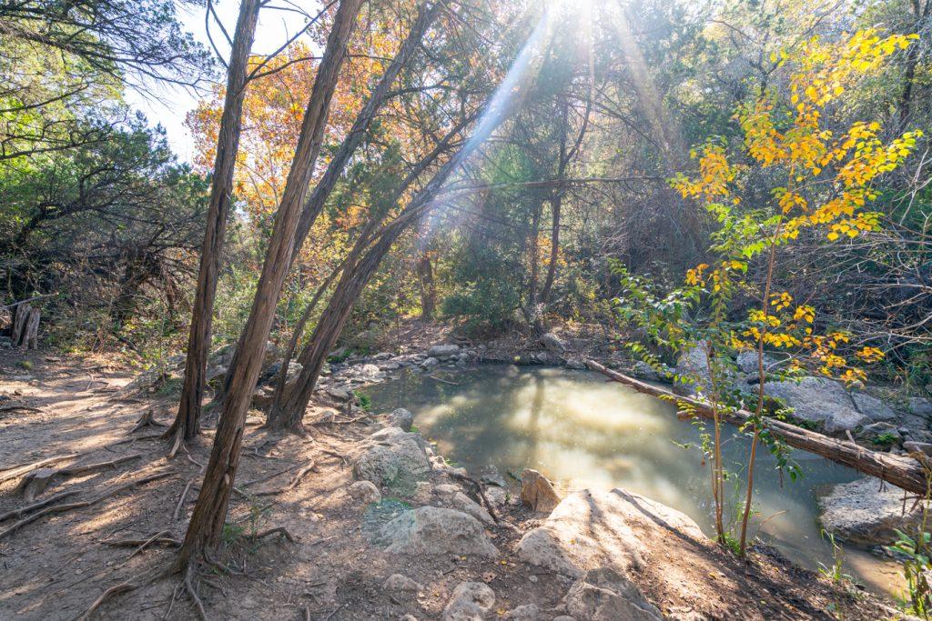 turkey creek trail in austin texas fall foliage