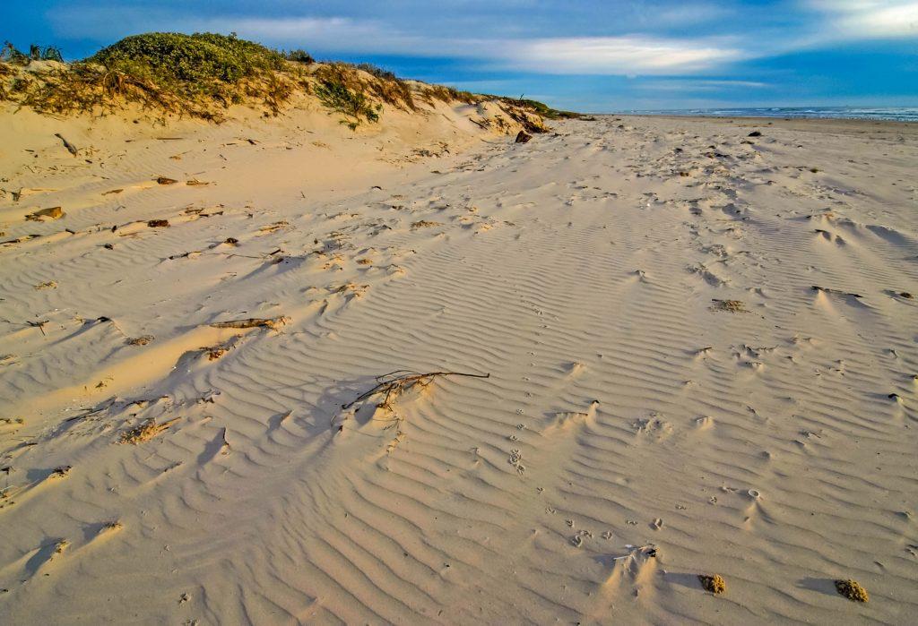 sandy stretch of one of the best corpus christi beaches