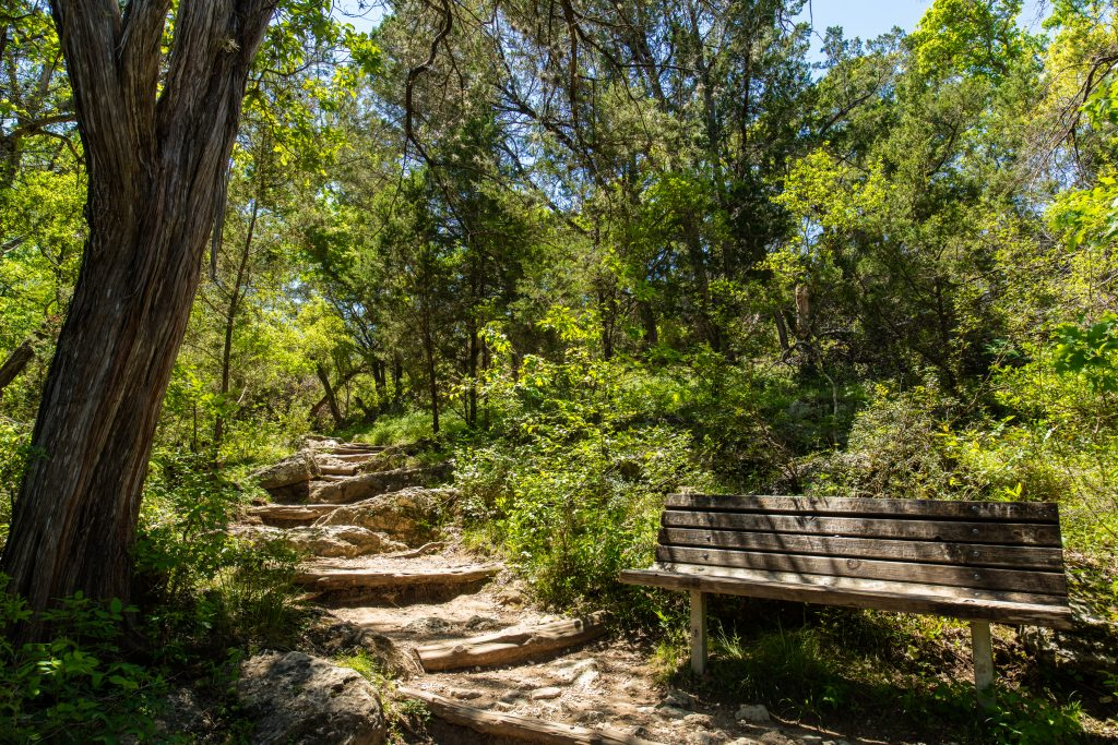 hiking trail in texas hill country with wood bench on the side of it. trail is shaded by trees