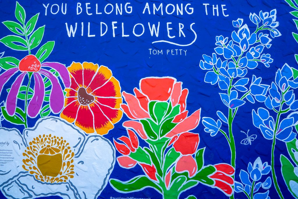 blue mural with wildflowers in austin with tom petty quote at the top