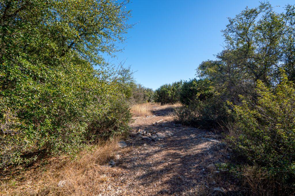 hiking trail in charro ranch park driftood texas