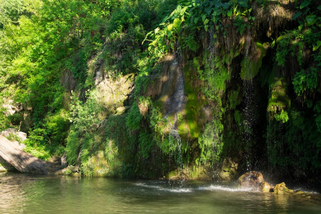 small waterfall into a pool at krause springs, one of the fun things to do in spicewood texas