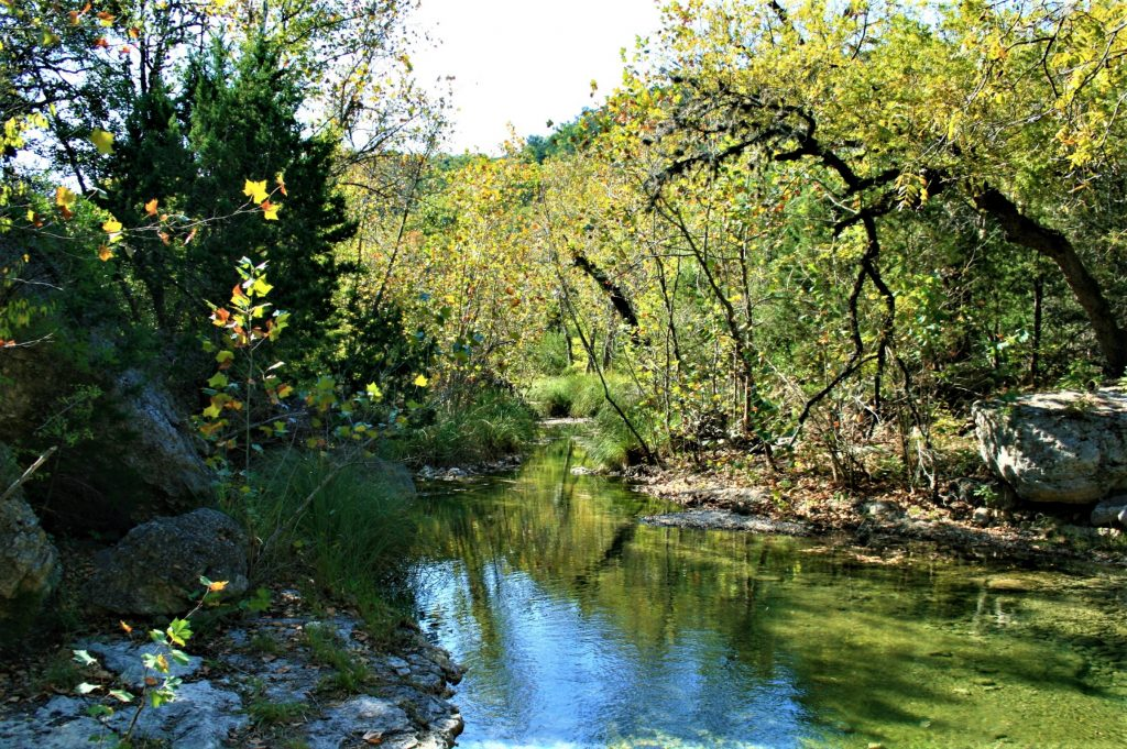 sabinal river during the summer