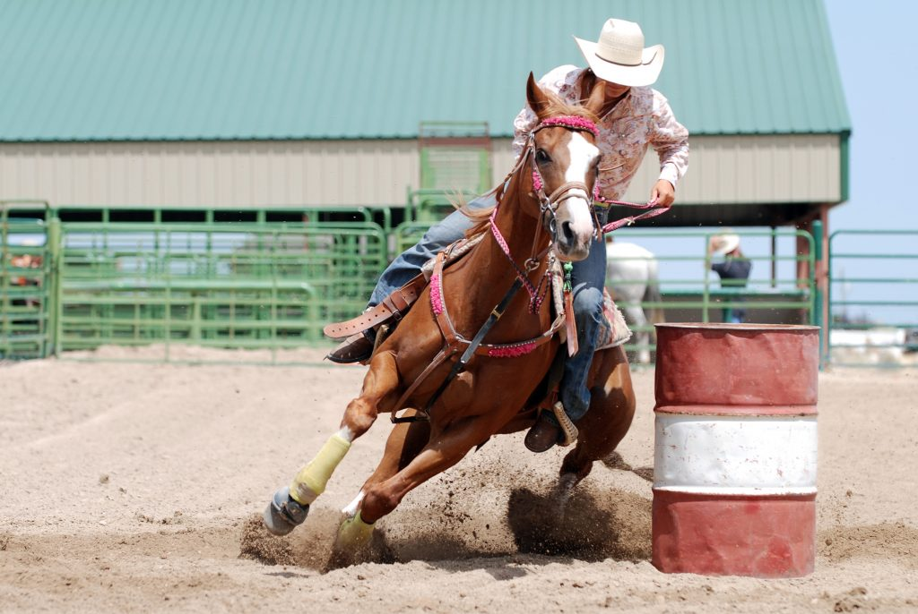 woman barrel racing at a rode--when choosing dallas vs houston, houston wins the battle for its rodeo
