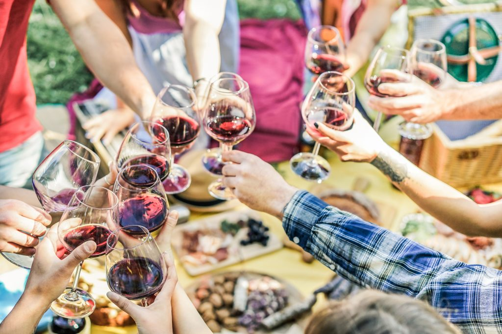group of friends toasting red glasses of wine over a picnic lunch
