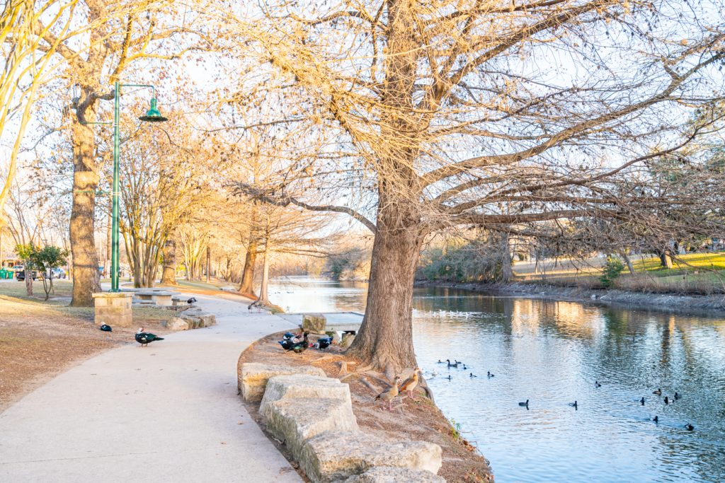 view of the sidewalk trail along cibolo creek with ducks and geese, one of the boerne attractions