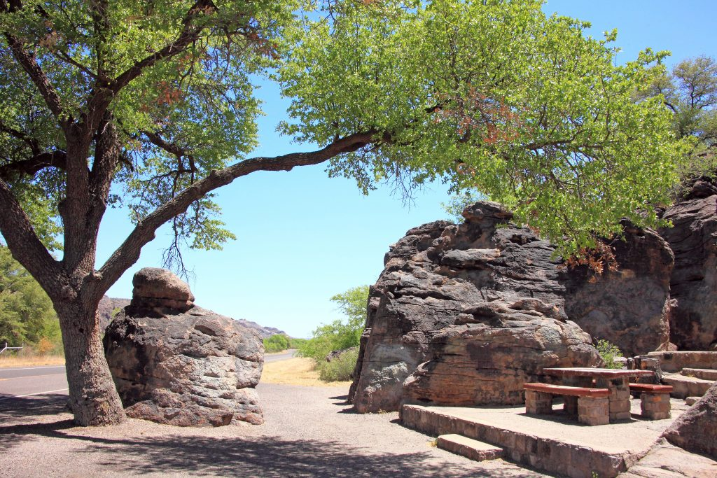 picnic table under a tree when hiking davis mountains state park texas