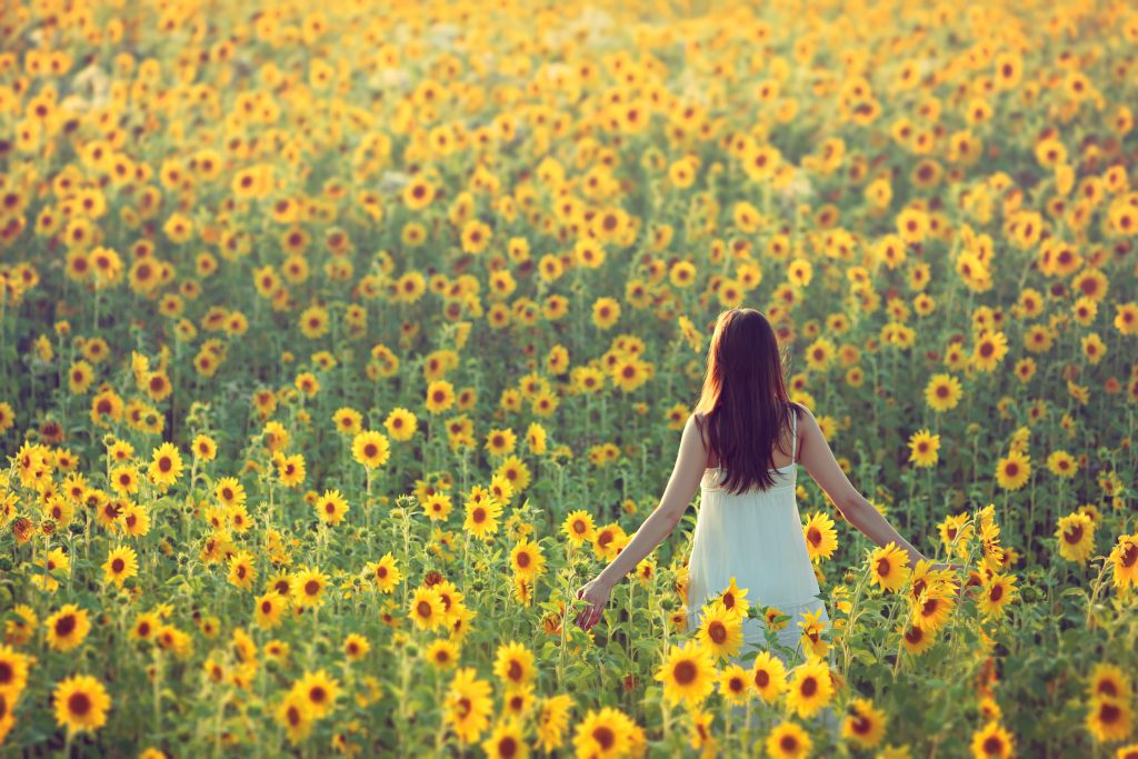 young woman standing in one of the texas sunflower farms in a white dress