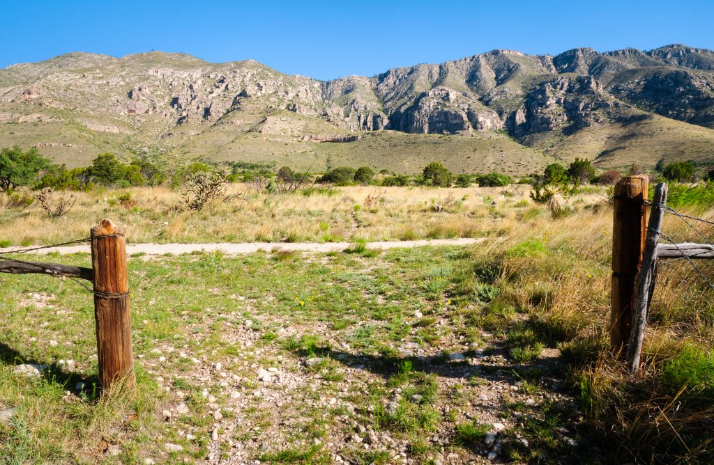 flat meadow along one of the hikes in guadalupe mountains texas