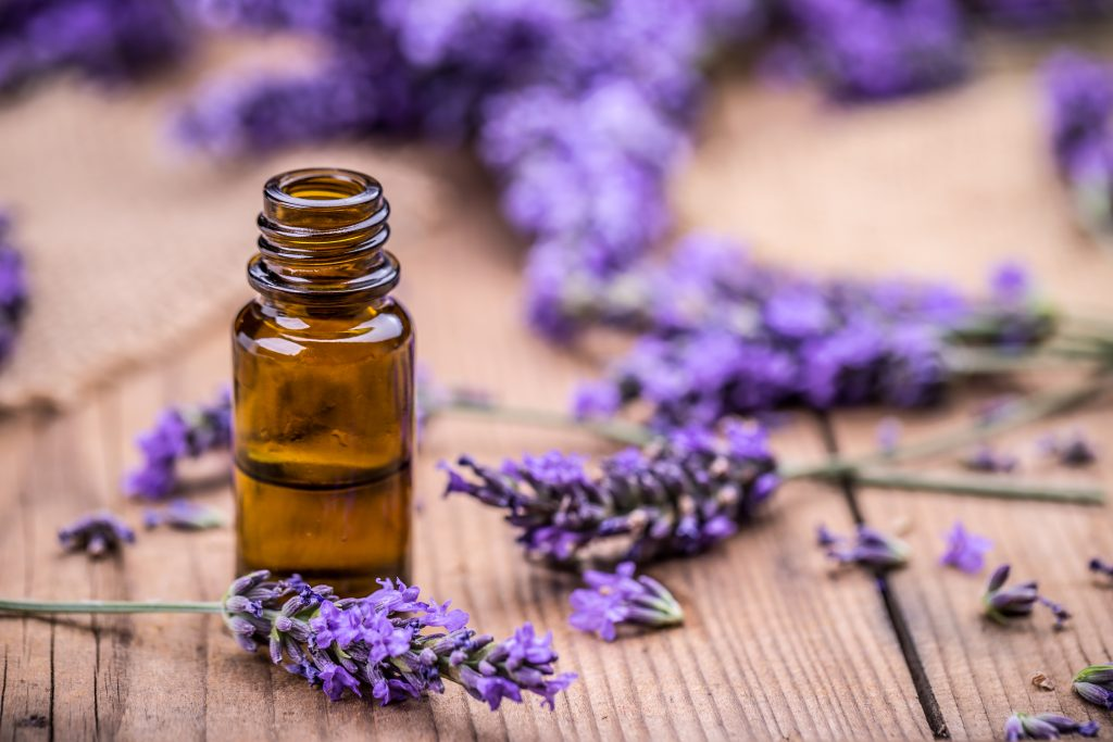 sprigs of lavender surrounding a bottle of lavender oil