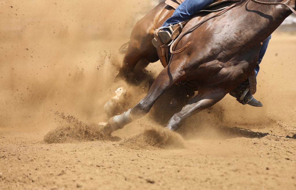 brown horse running through a dirt ring in a rodeo