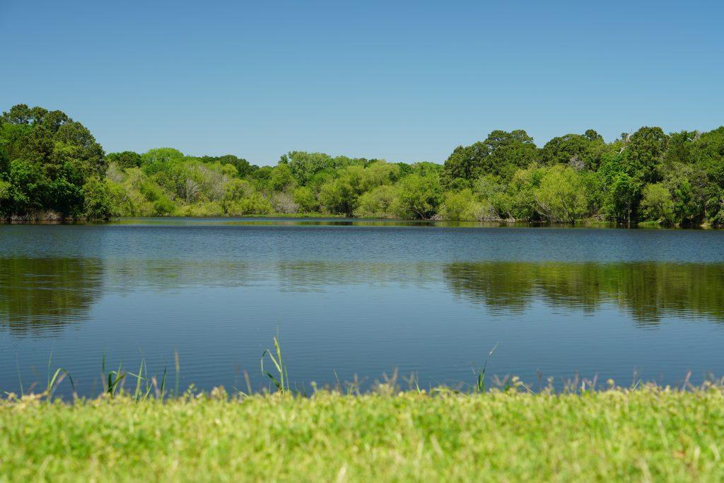 lake at buescher state park texas