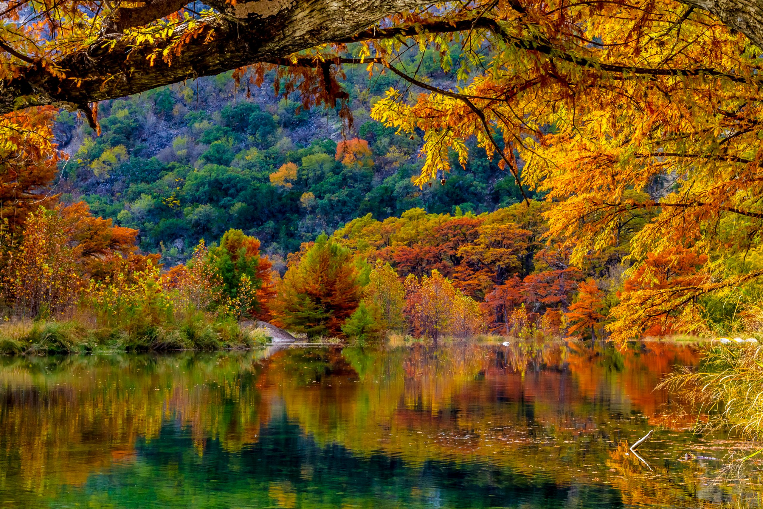 best fall colors in texas at frio river garner state park. fall in texas can include lots of foliage if you know where to look