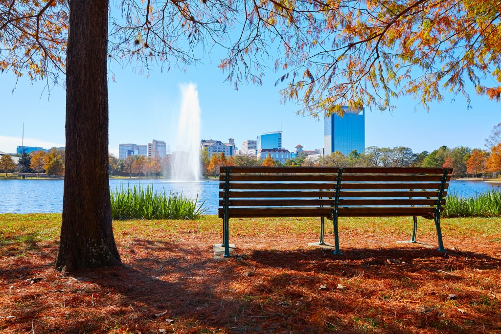 bench in front of mcgovern lake in fall, one of the best lakes in houston tx
