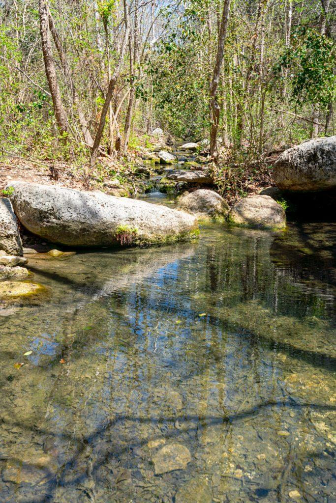 water running in a creek in austin texas