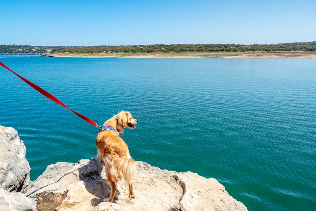 ranger storm overlooking lake travis from pace bend park, one of the best lakes in austin tx
