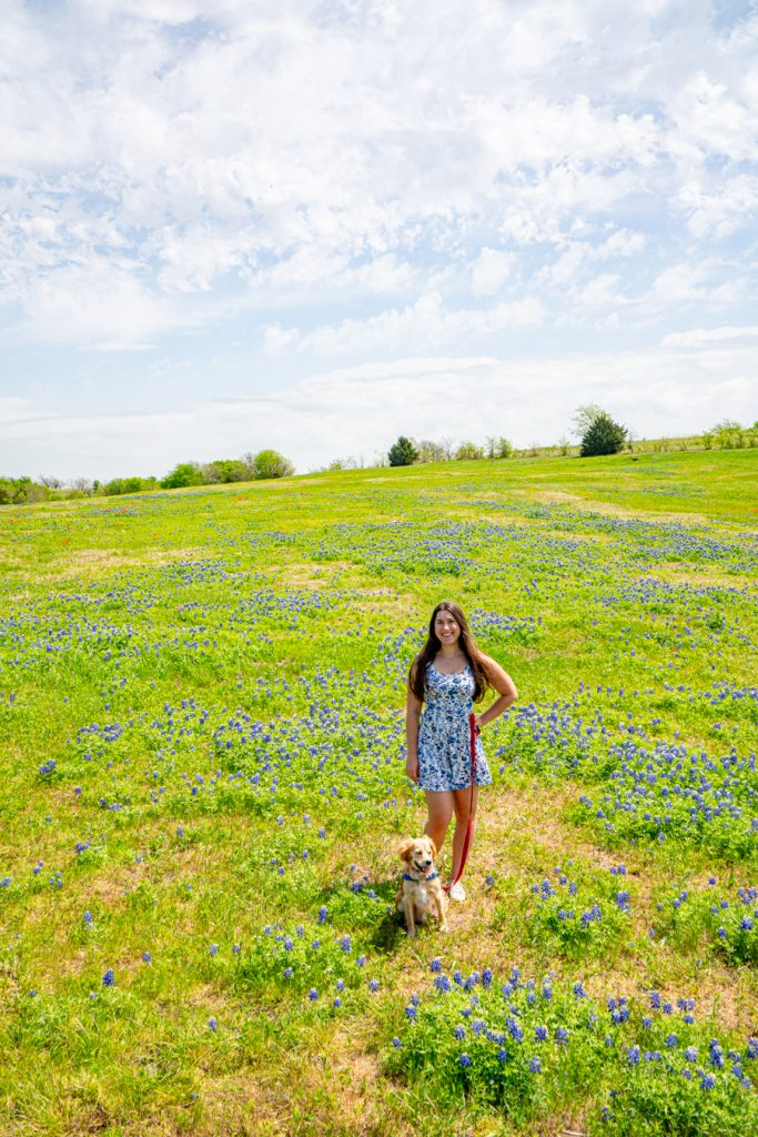 kate storm and ranger storm in a bluebonnet field in ennis texas