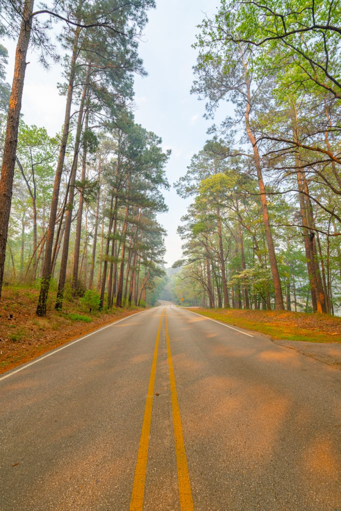 road leading into hunstville state park texas
