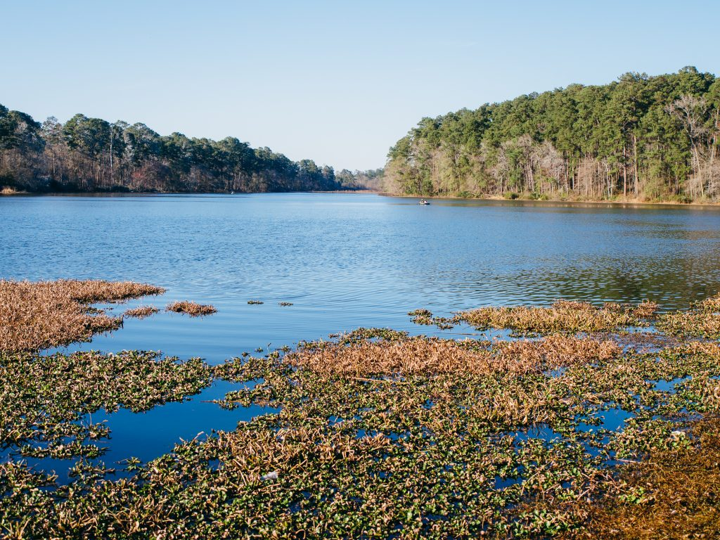 view of lake raven huntsville state park