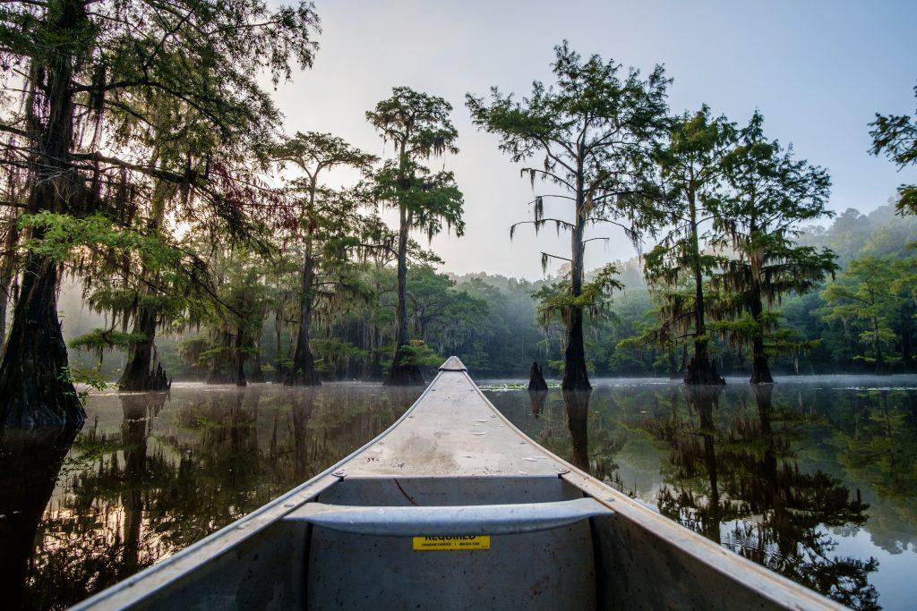front of a gray canoe caddo lake
