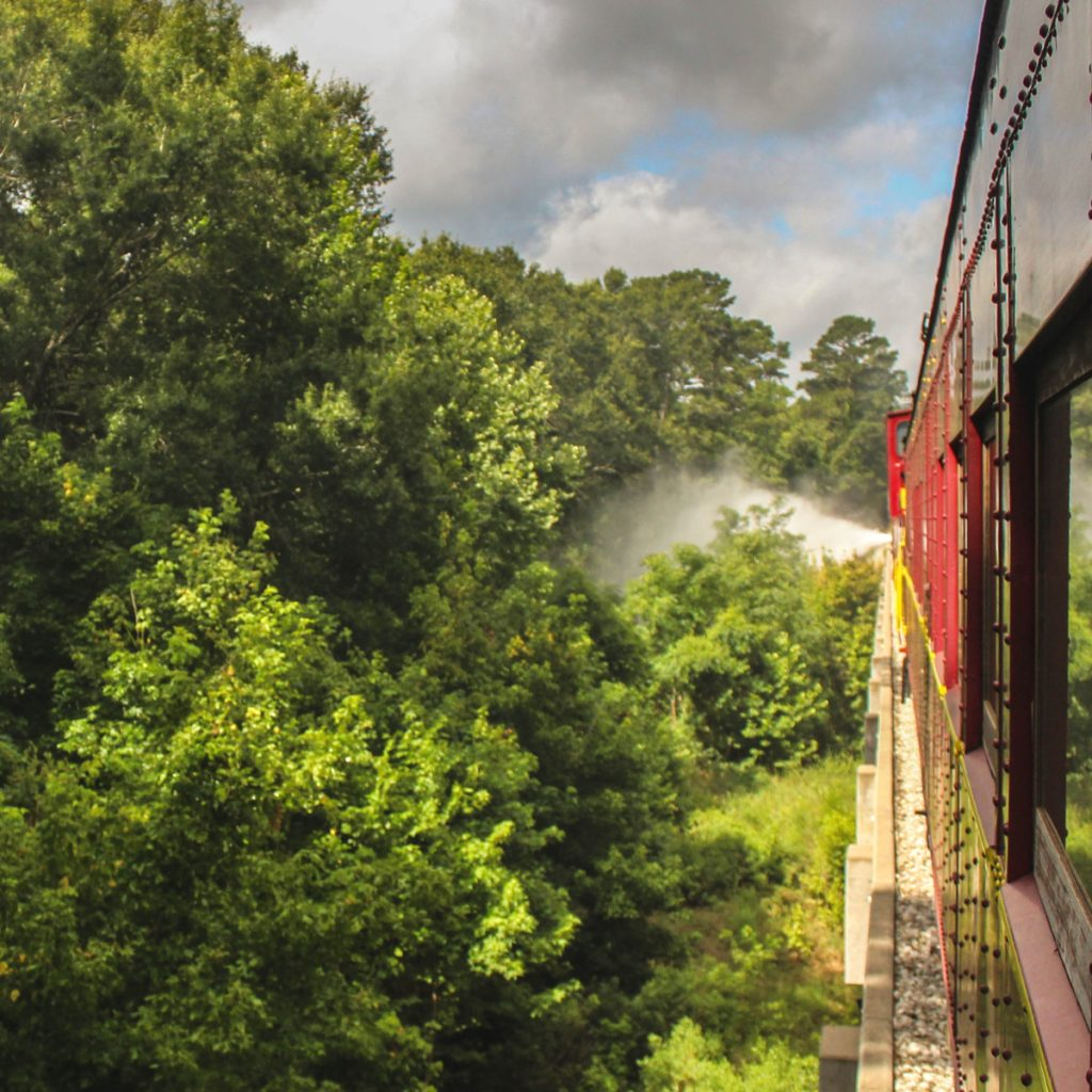 view out of the texas state railroad, one of the best day trips in texas