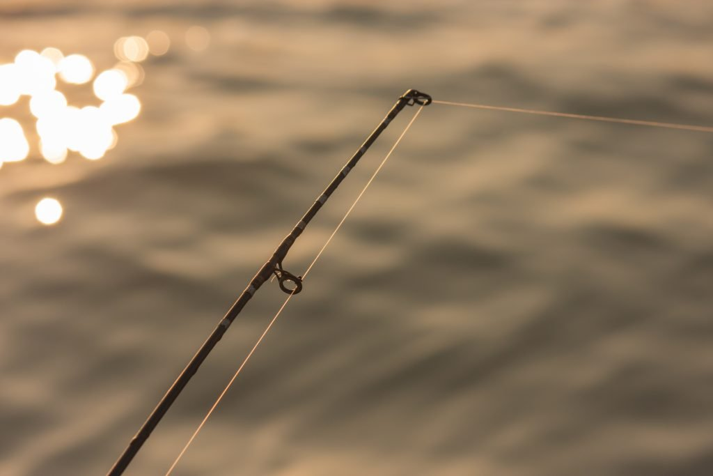 close up of a fishing rod against water at sunset