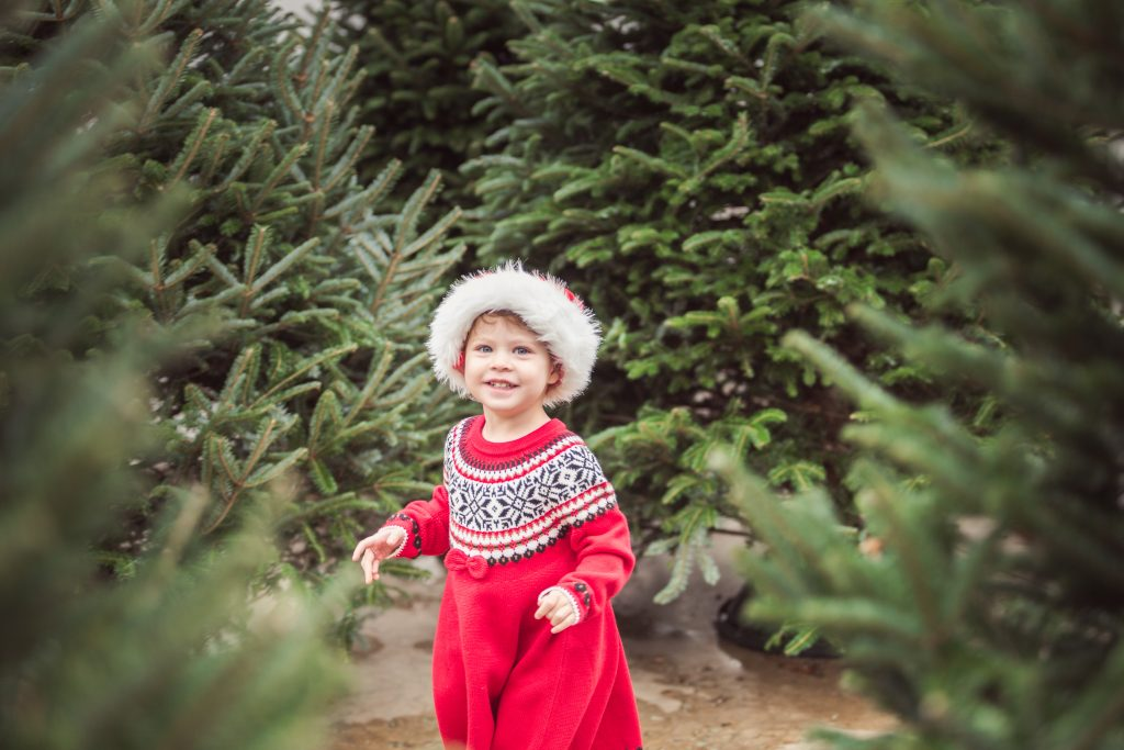 young girl in a red dress at a christmas tree farm