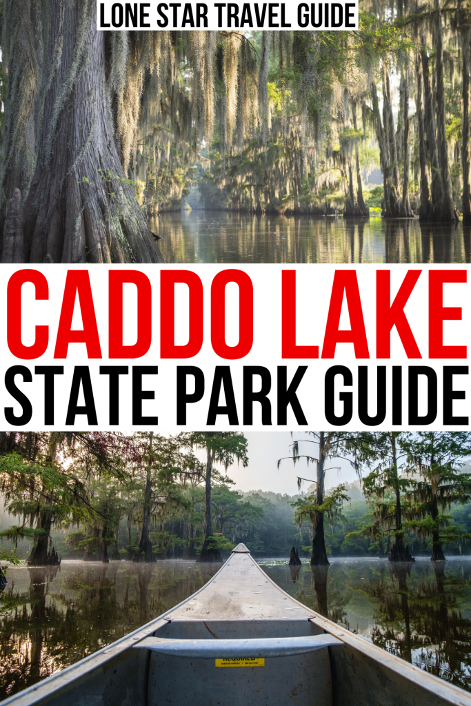 """2 photos of caddo lake texas, black and red text on a white background reads """"caddo lake state park guide"""""""