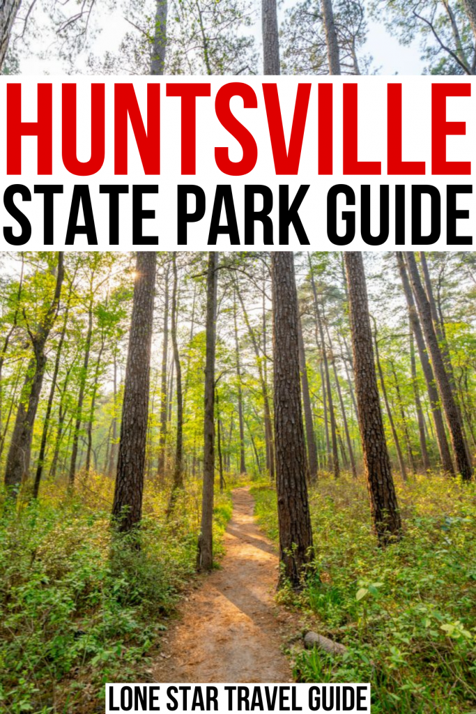 """photo of hiking trail in piney woods texas, red and black text on a white background reads """"huntsville state park guide"""""""