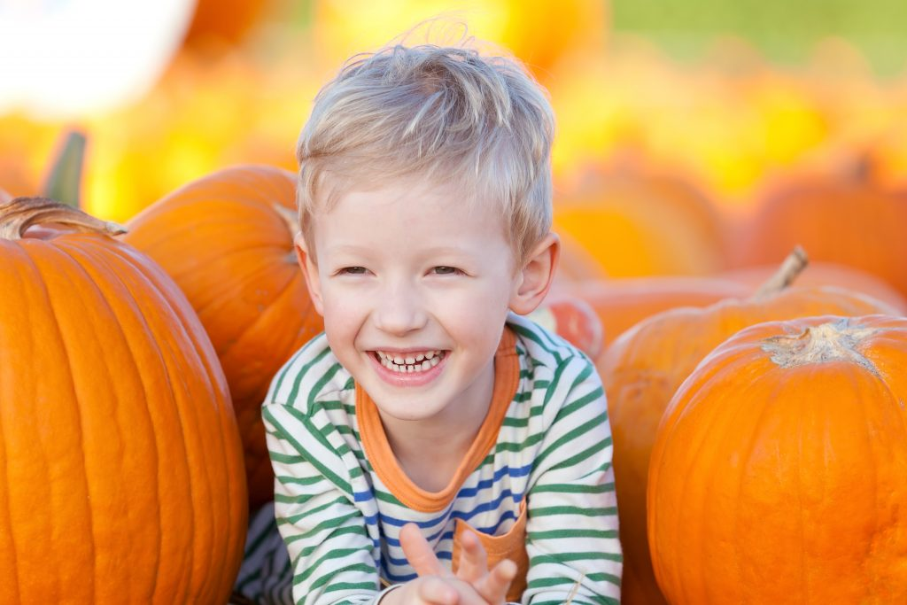 young blond boy smiling in a pumpkin patch