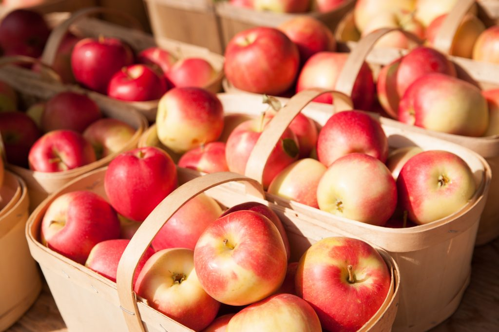 wooden baskets of apples in texas apple orchard