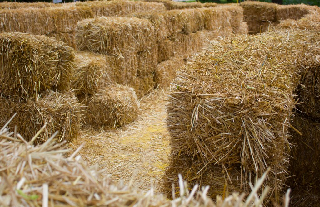 hay bale maze as seen from above. many of the best pumpkin farms near dallas hay bale mazes as part of fall festivals