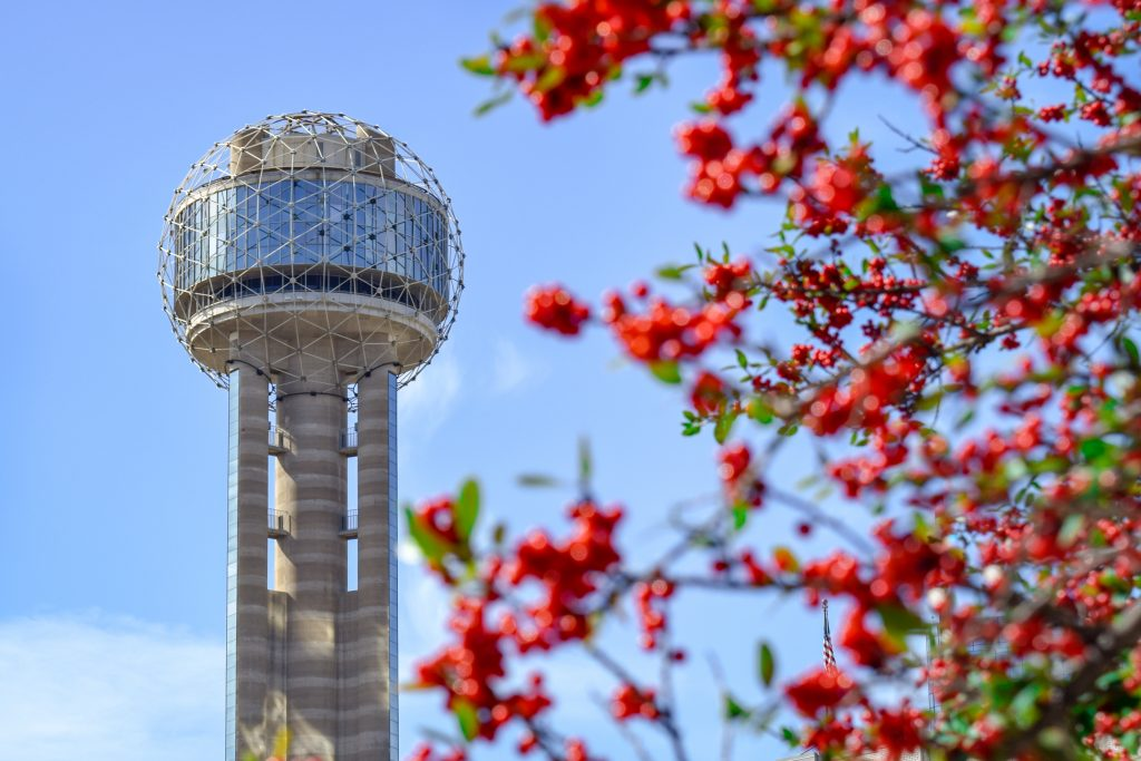 dallas reunion tower with red flowers in the foreground, quotes dallas sayings