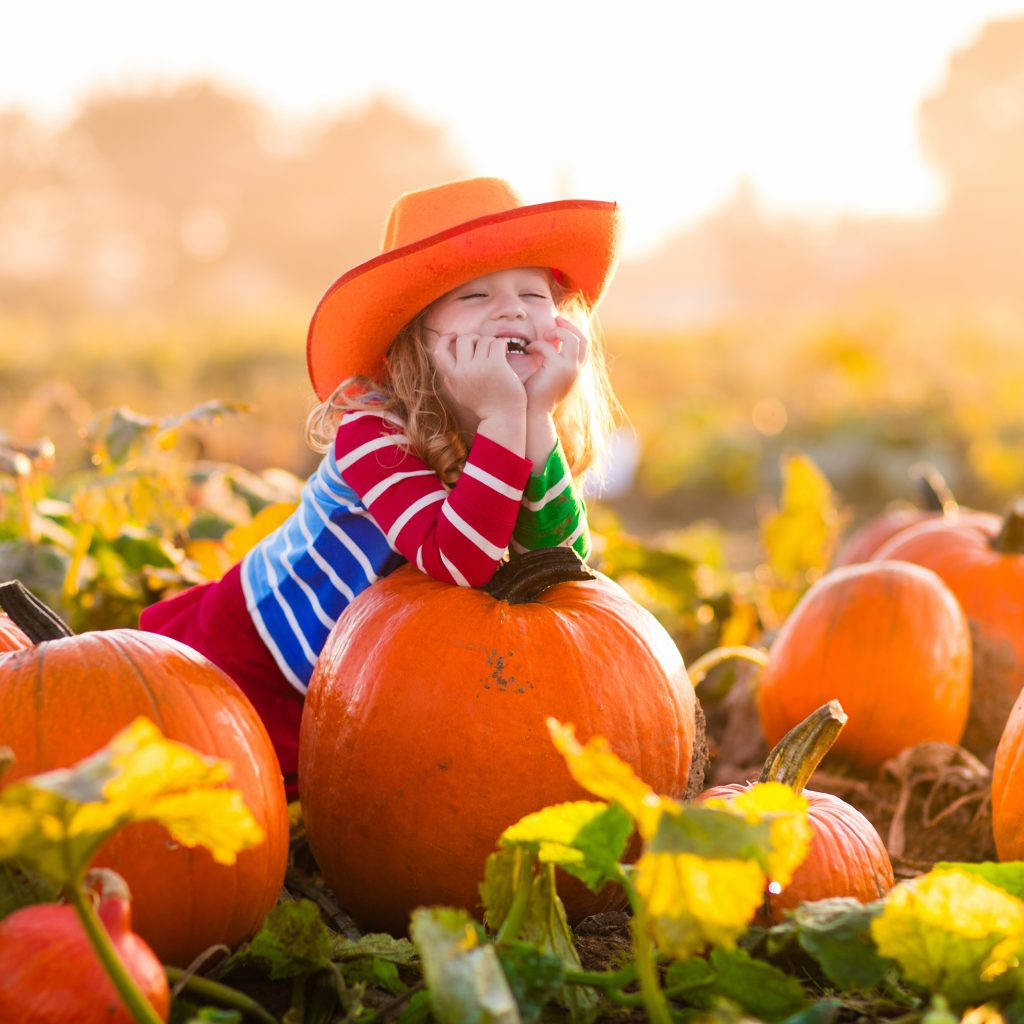 young girl in an orange cowboy hat in a pumpkin patch houston